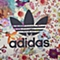 adidas阿迪三叶草新款女子三叶草系列连帽卫衣AJ8148